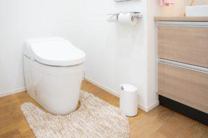 和式トイレを洋式トイレにリフォームにしませんか?画像